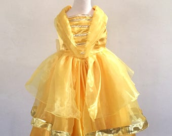 Beauty and the Beast Belle Dress Belle Ball gown