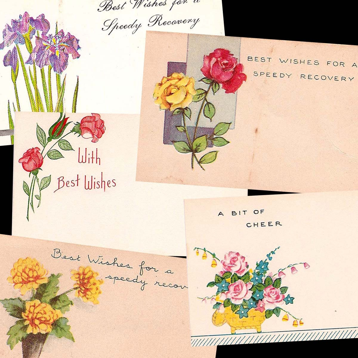 Vintage Floral Shop Gift Tags And Greetings Best Wishes