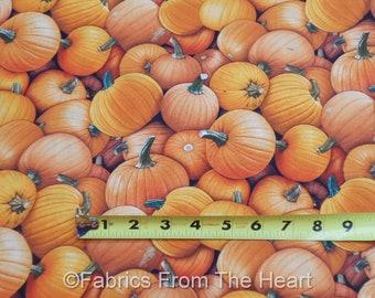 Harvest Time Pumpkins Autumn Fall   BY Yard , 1/2 yd, Fat Quarter  Elizabeth's Studio 100%  Cotton Fabric
