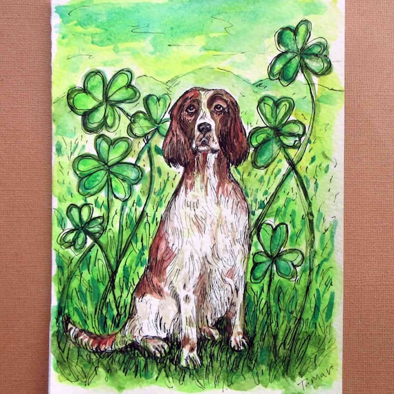 IRISH RED AND WHITE SETTER THREE DOGS LOVELY DOG PRINT MOUNTED READY TO FRAME