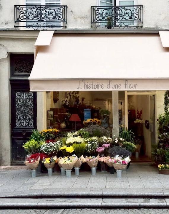 Paris Photography L Historie D Une Fleur Paris Etsy