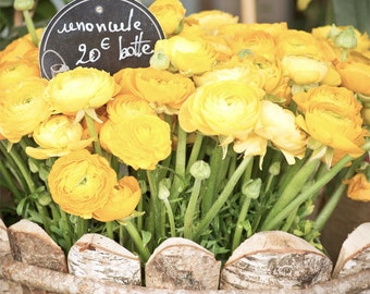 "Paris Photography, ""Yellow Ranunculus"" Paris Print, Large Art Print Fine Art Photography, Yellow Wall Art for College Student Gift"