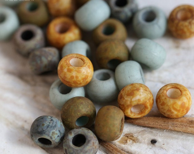 Matte EARTHY SUCCULENT SEEDS No. 8424 .. New 30 Premium Matte Picasso Czech Glass Seed Bead Mix Size 2/0 (8424-30)