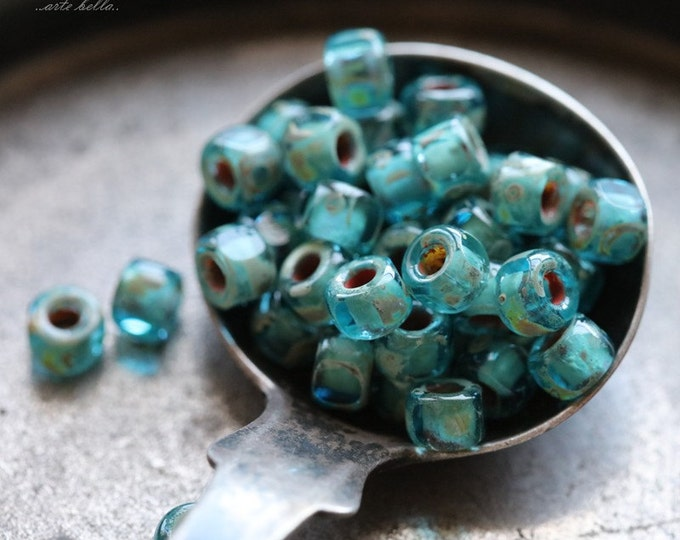 AQUAMARINE SEEDS .. 50 Premium Japanese Picasso Glass Tri-Cut Seed Bead Mix Size 6/0 (5233-50)