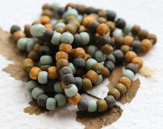 Matte EARTHY SUCCULENT SEEDS .. 1 Strand Premium Picasso Czech Glass Matte Aged Seed Bead Mix Size 6/0 (8416m-st)