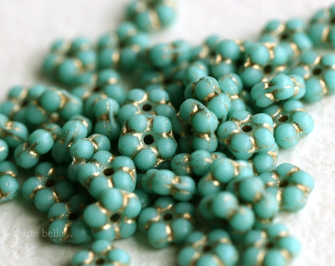 GILDED TURQUOISE VINCA .. New 50 Premium Czech Glass Flower Spacer Beads 5mm (7259-st)