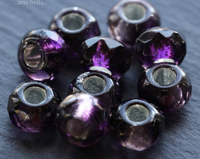 GRAPE ROLLERS .. 10 Premium Czech Glass Large Hole Roller Beads 6x9mm (6081-10)