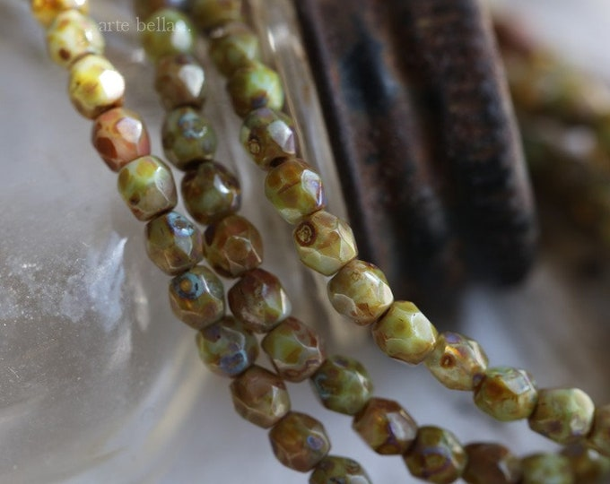 CACTUS PICASSO BITS .. 50 Premium Picasso Faceted Czech Glass Beads 3mm (6586-st)