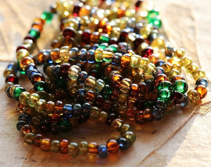 """CONFETTI SEED MIX .. New 21"""" Premium Picasso Czech Glass Seed Bead Mix Size 8/0 (8508-st)"""