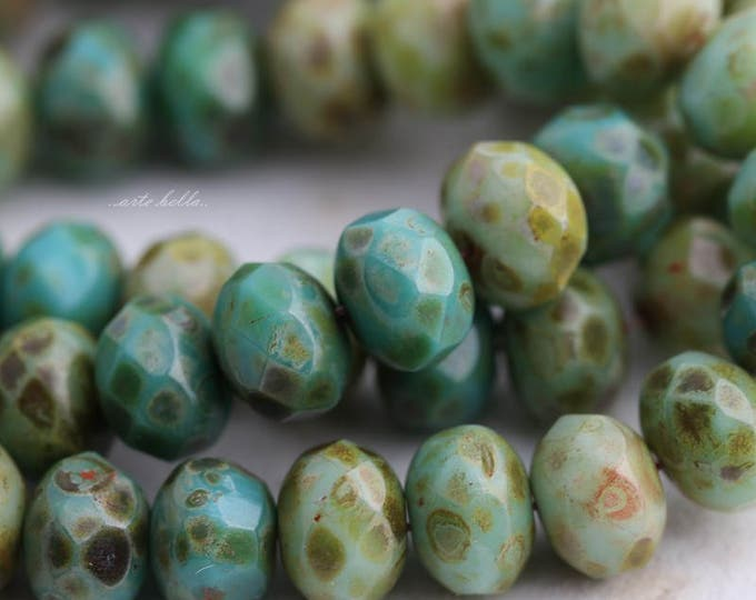 AGED MIX No. 3 .. 25 Premium Picasso Czech Faceted Rondelle Beads 6x9mm (5725-st)