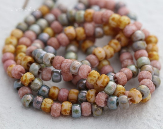 "SEED BEAD MEDLEY No. 7865 .. 20"" Premium Picasso Czech Glass Seed Bead Mix Size 6/0 (7865-st)"