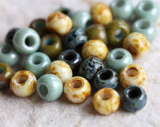 EARTHY SUCCULENT SEEDS No. 8422 .. 30 Premium Picasso Czech Glass Seed Bead Mix Size 2/0 (8422-30)