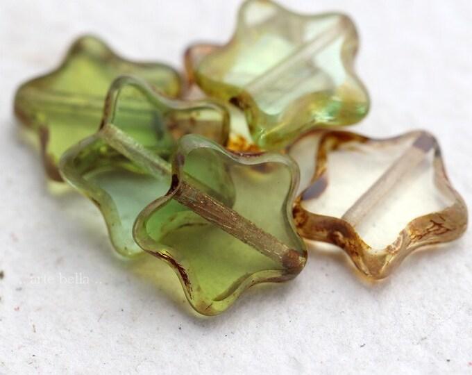 SPRING STAR MIX .. 6 Premium Picasso Czech Glass Star Beads 12mm (8181-6)