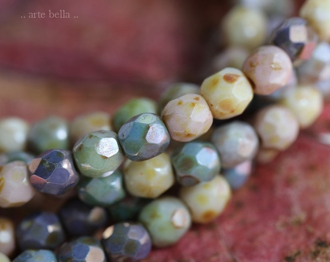 MUTED RAINBOW MEDLEY 4mm .. 50 Premium Picasso Faceted Czech Glass Beads (7793-st)