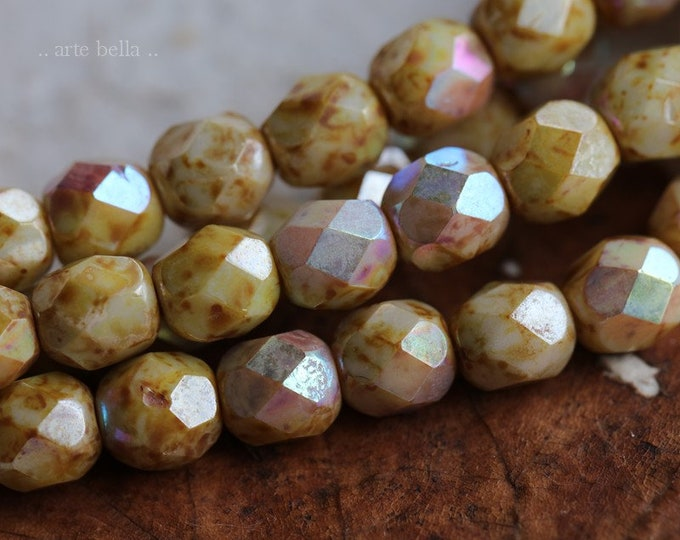 last ones .. MYSTIC TOASTED CREAM 6mm .. 25 Premium Picasso Czech Faceted Round Glass Beads (6581-st)
