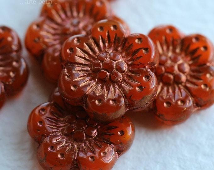 ORANGE COPPER ROSES .. New 6 Premium Czech Glass Wild Rose Beads 14mm (6863-6)