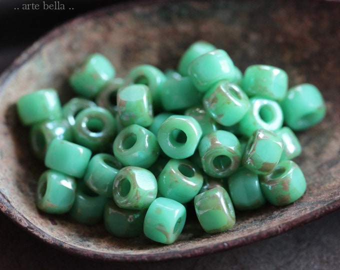 SILVERED TURQUOISE SEEDS No. 8387 .. 50 Premium Picasso Matubo 3 Cut Czech Glass Seed Beads Size 6/0 (8387-50)