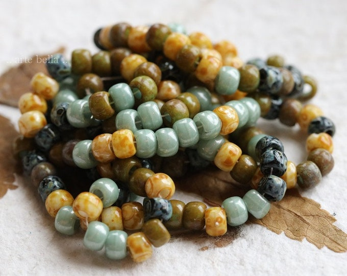 EARTHY SUCCULENT SEEDS .. 1 Strand Premium Picasso Czech Glass Glossy Aged Seed Bead Mix Size 6/0 (8415g-st)