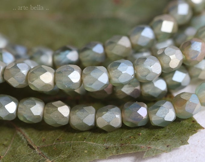 MYSTIC SAGE 4mm .. 50 Premium Matte Czech Glass Faceted Round Beads (7792-st)