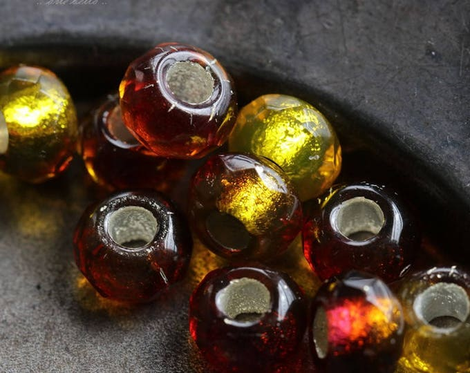TEQUILA SUNRISE .. 10 Premium Czech Glass Large Hole Roller Beads 6x9mm (5768-10)