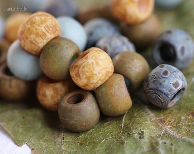 Matte EARTHY SUCCULENT SEEDS No. 8427 .. 30 Premium Matte Picasso Czech Glass Seed Bead Mix Size 32/0 (8427-30)