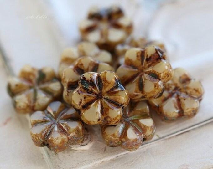 CREAM BLOOMS .. 10 Picasso Czech Flower Glass Beads 10x3mm (4851-10)