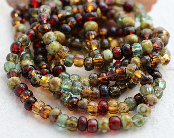 """CIRCUS SEED MIX No. 8196 .. 20"""" Premium Picasso Czech Glass Seed Bead Mix Size 6/0 (8196-st)"""