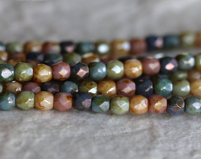 RAINBOW MEDLEY 3mm .. 50 Premium Picasso Faceted Czech Glass Beads 3mm (6170-st)