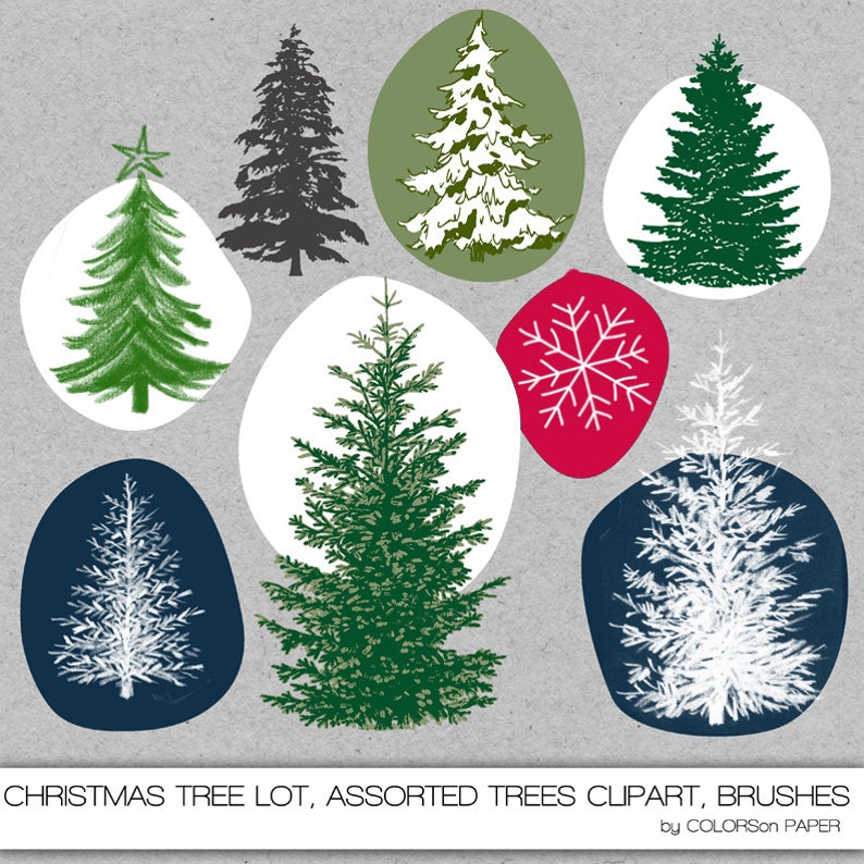 Christmas Tree Lot Clipart Assorted Trees Realistic Etsy