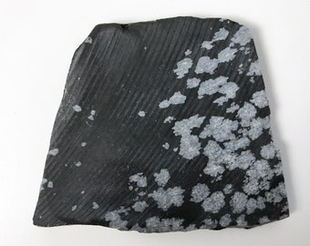 Lapidary Slice - Rough Slab of Snowflake Obsidian - Cabbing Slab