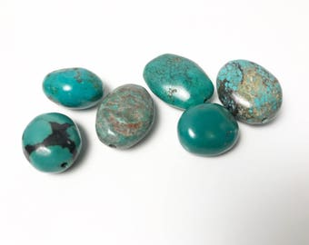 Yummy Turquoise Nuggets - Lovely Color - Mixed - Six Smooth Tumbled Turquoise Beads