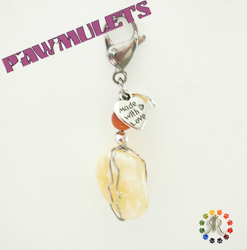 Chasing issues Honey Calcite Pawmulet Pet charm Intestinal and Stomach issues