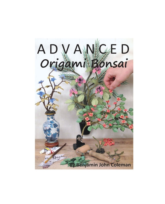 Advanced origami bonsai how to book on computer dvd etsy image 0 mightylinksfo