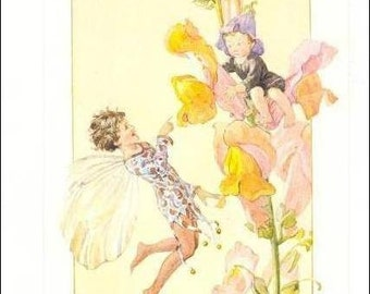 vintage postcard - Margaret Tarrant postcard,  vintage postcard, Fairy Finds Young Boy in Snap Dragon vintage postcard, Medici postcard