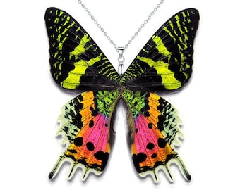Resin Butterfly Wings Real Butterfly Necklace Insect Boho Witchy Fairy Wings Oddity Jewelry Blue Gray Purple Butterfly Cruelty Free