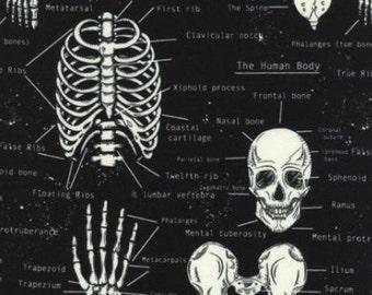 One (1) Yard - Glow in the Dark Skeletons print Timeless Treasures Fabric Fun-CG9810-Black