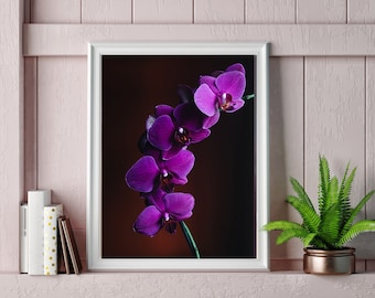 PHOTOGRAPH PRETTY PURPLE ORCHID FLOWERS PETALS PICTURE ART PRINT POSTER MP5641A