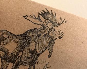 Moose, vintage kraft card, blank, made in Canada, recycled, wholesale available, antique, old fashioned, stationery, writing, Canadian