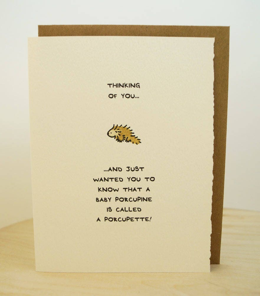 Thinking Of You Porcupine Greeting Card Cute Adorable Kawaii