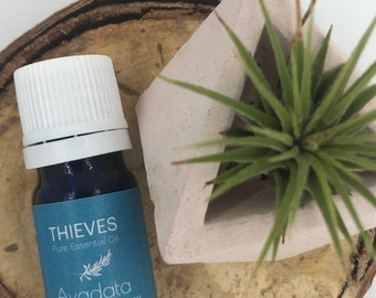 Thieves Oil