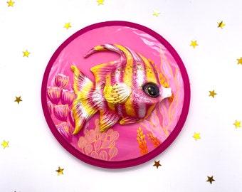 Rainbow Angelfish (pink and yellow)