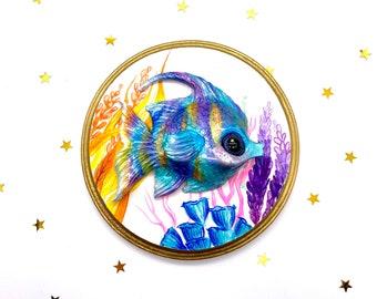 Rainbow Angelfish (rainbow)