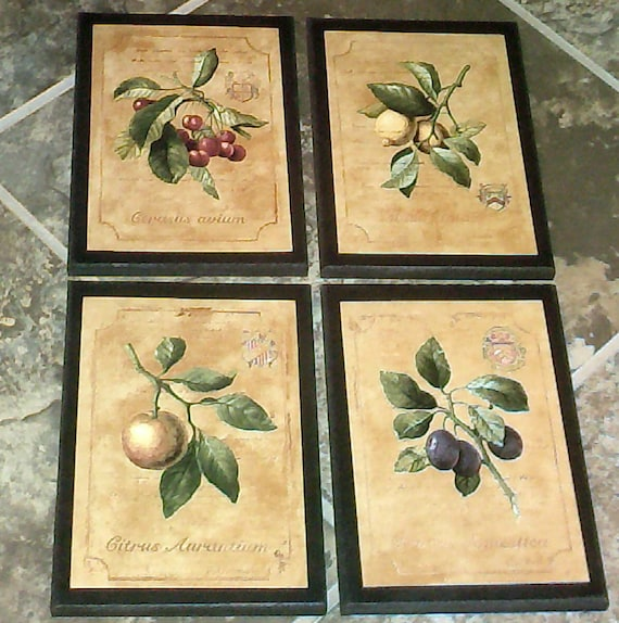 Colorful Kitchen Wall Art: Fruit 4 Kitchen Wall Decor Signs Plaques Set Colorful
