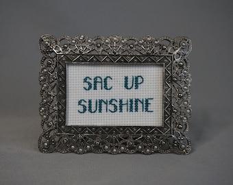 Sac Up Sunshine Framed and Finished Cross Stitch Humor Silver Frame