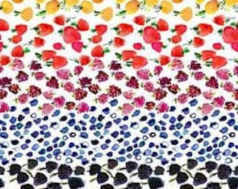 Sold by the Half Yard - August Wren Tree of Life Fruit Ombre in White - Digitally Printed by Dear Stella Fabrics