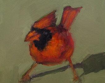 CARDINAL RED BIRD  Art Giclee print from my original oil painting