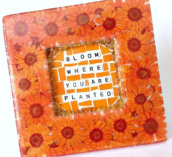 Orange Flower Framed Art, Bloom Where You Are Planted Quote Frame, Orange Mosaic Daisy Flower Frame, Garden Quote Mixed Media Wall Art,