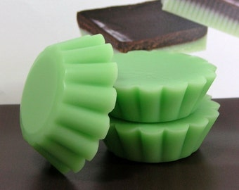 Mint Chocolate PURE SOY Tart Melts (Set of 4)