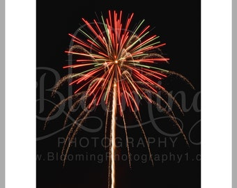 """8x10 Matted Print of """"Independence Flower"""""""