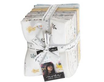 LITTLE DUCKLINGS - Baby nursery cotton fabric bundle, 33 fat quarters